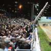 Shelbourne Park to get a €3 million revamp - a year after closing for 22 weeks
