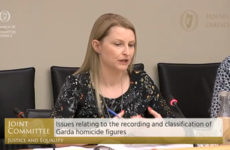 Garda analysts 'were belittled and disrespected when they tried to highlight inaccurate homicide figures'