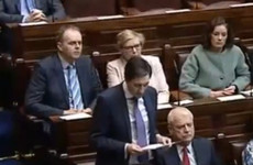 Minister establishes Referendum Commission for Eighth Amendment referendum