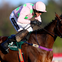 Douvan will run in the Champion Chase but the head-to-head with Altior may not happen