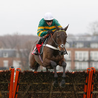 Poll: Who do you think will win today's Champion Hurdle at Cheltenham?