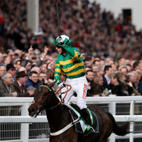 Let our foolproof quiz pick your Champion Hurdle horse