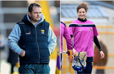 'Mags D'Arcy and Davy Fitzgerald are a tremendous fit:' Ex-Wexford boss backs backroom appointment