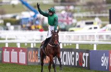 Mixed results for Ruby and Mullins on the opening day at Cheltenham