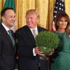 Leo Varadkar presents Donald Trump with bowl of shamrock in St Patrick's Day ceremony