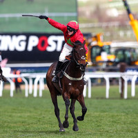 The hosts and bookies bounce back on day four of Cheltenham