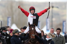 Jockey dislocates her shoulder, pops it back in, wins her first Cheltenham race