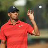 Tiger Woods has now climbed an incredible 551 places in the world rankings this year