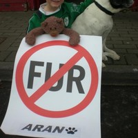Leading actors call for ban on fur factory farming in Ireland