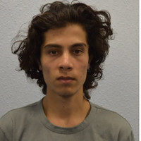 London Tube bomber (18) sentenced to 34 years in prison