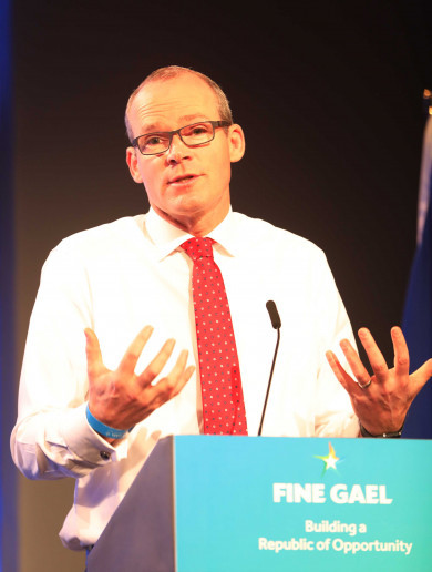Simon Coveney u-turn: Tánaiste now says he backs 12 weeks proposal