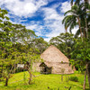 Parts of the Amazon thought uninhabited were actually home to up to a million people