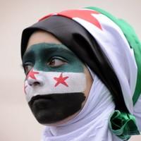 Clashes continue in Syria despite UN statement