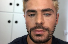 People are comparing Zac Efron's beard to a panini maker because the internet is mean