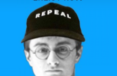 Dumbledore's Army Ireland is the new Instagram repeal account you should follow