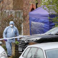 Pensioner arrested for murder after burglar stabbed to death in London