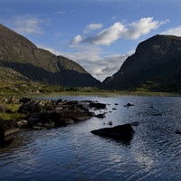 Two tourists (60s) have died after a pony and trap incident at Kerry's Gap of Dunloe
