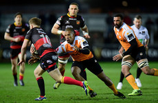 Scarlets snap up a second Cheetahs star for next season