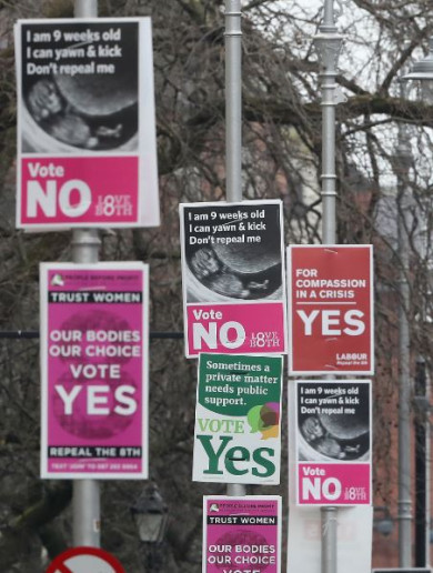 Canadian NGO sending 'observation team' to monitor Eighth Amendment referendum