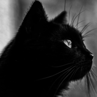 13 hugely important facts all superstitious people need to know about Friday the 13th