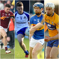 Comer, McCarthy, Forde and Cleary amongst the inter-county stars honoured in Sigerson and Fitzgibbon teams of the year