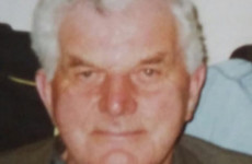 Gardaí renew appeal for 89-year-old Wexford man missing since early January