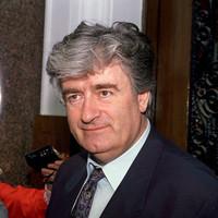 Radovan Karadzic begins appeal against conviction for genocidal 'campaign of terror'
