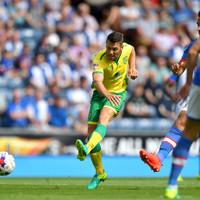 Wes Hoolahan to leave Norwich at the end of the season