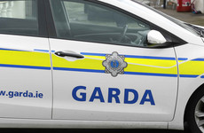 Two men arrested and €250,000 worth of drugs seized in garda gangland raids