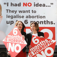 Explainer: Here's what the proposed legislation says about abortion up to six months
