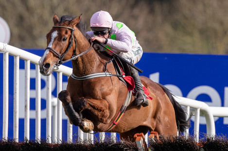 Faugheen: had 13 lengths to spare over a class field.
