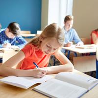 Column: Do we really need mandatory standardised testing in primary schools?