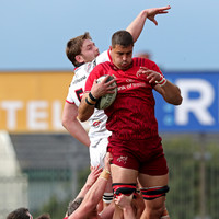 Munster confirm 'top-quality player' Grobler will leave this summer