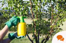 Bio-insecticide Supernemos: 'Sometimes GIYing is not for the faint hearted'