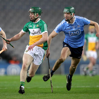 Threat of relegation hangs over Dublin and Offaly ahead of Leinster hurling campaign
