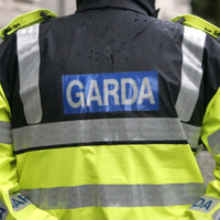 Cannabis and MDMA worth €335,000 seized in Meath
