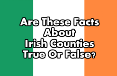 Are These Facts About Irish Counties True Or False?