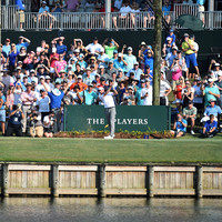 Webb Simpson's dream of an incredible 59 at the Players goes splash on the 17th