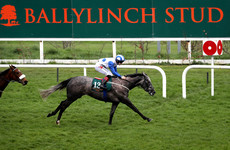 Who's Steph continues on upward curve as Hazapour springs surprise in Leopardstown