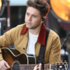 Niall Horan says he's not heartbroken anymore so he needs to change musical direction