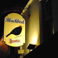 'Whoever made it, they put an atmosphere in the walls': The magic of the Blackbird in Ballycotton