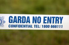 Two men stabbed at Dublin Luas stop