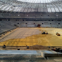 An Irish-owned firm has bagged the contract to install and maintain the World Cup final pitch