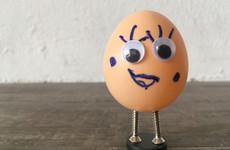 An egg a day may keep heart disease away