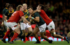 World Rugby to trial new low tackle laws in bid to reduce risk of head injuries