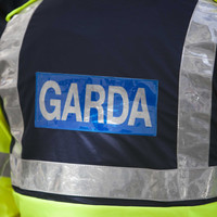 Garda investigation launched after man's body discovered in Louth field