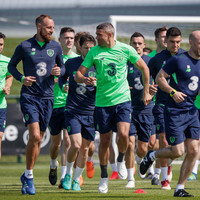 Do you agree with our Ireland team to face France?