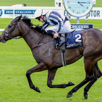 Alpha Centauri makes Harrington's dream a reality at the Curragh