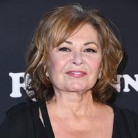 ABC axes hit sitcom Roseanne over star's racist tweets