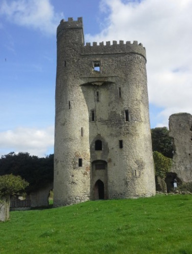 Historic doors stolen from 16th Century Laois castle